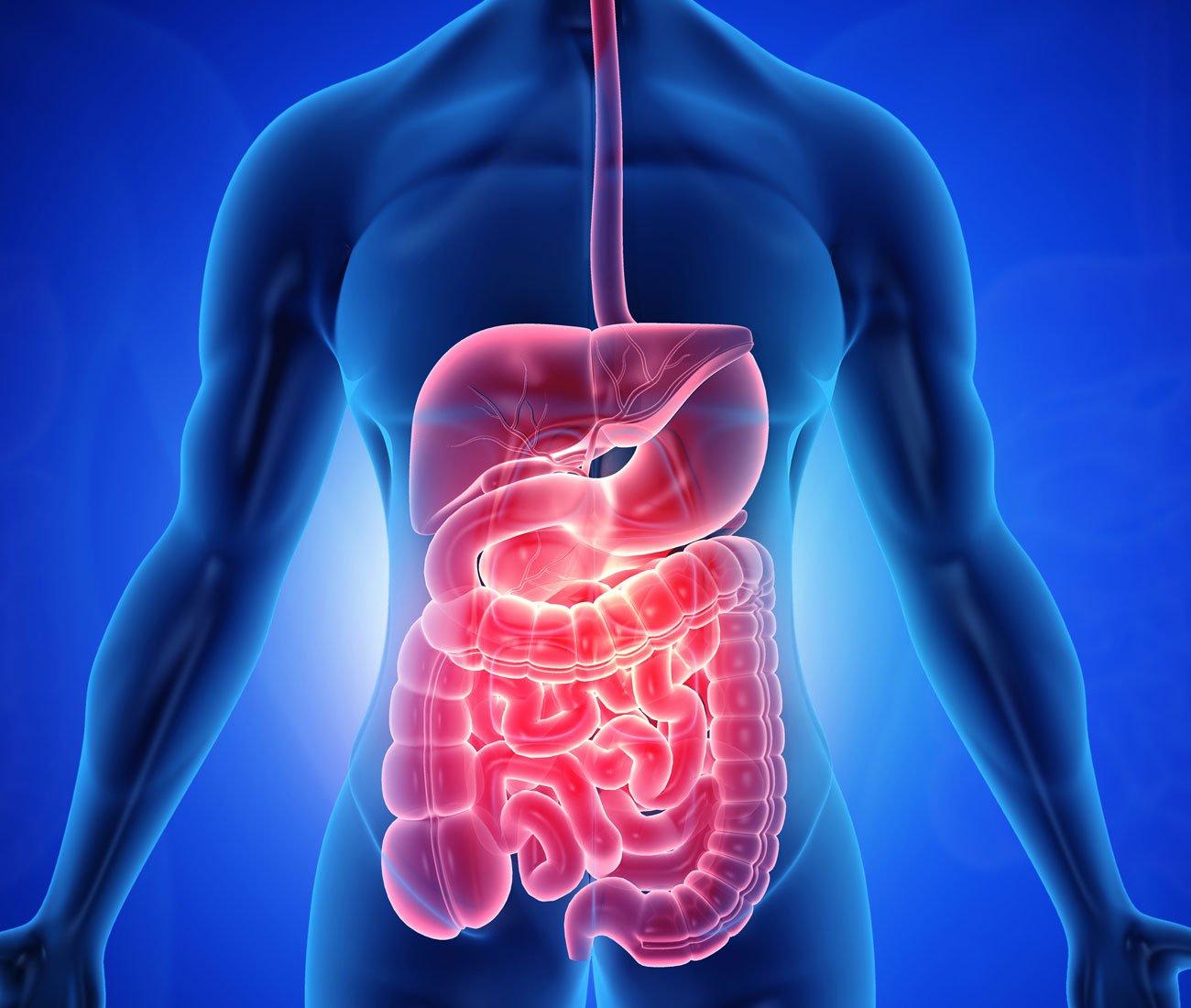 Gastroenterología en San Luis Potosí